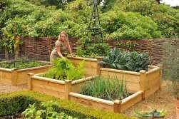 Superior Wooden Raised Beds Harrod Horticultural intended for 19+ How to Build Raised Garden Beds