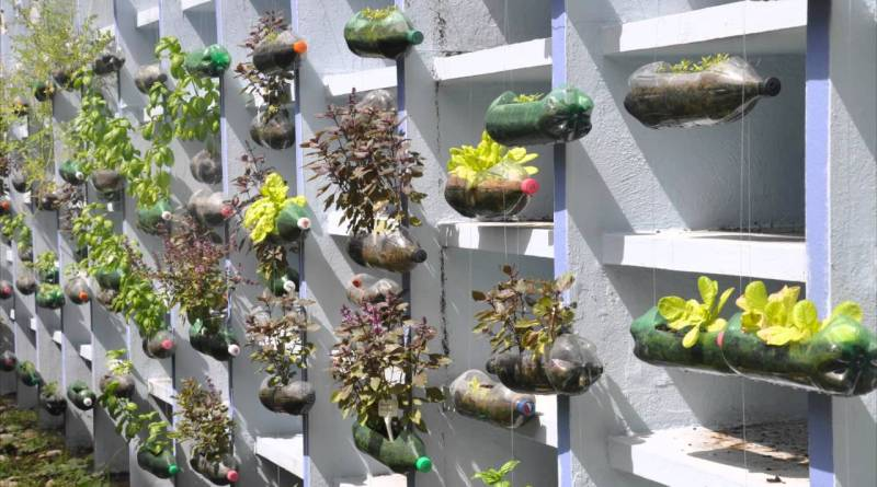 The Hanging Garden Project American School Of Recife Youtube intended for 26+ Hanging Herb Garden Ideas For Small Spaces