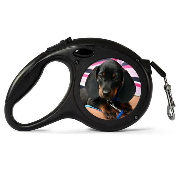 personalised dog lead