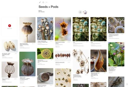 Ceramicscapes Pinterest Seeds and Pods Board