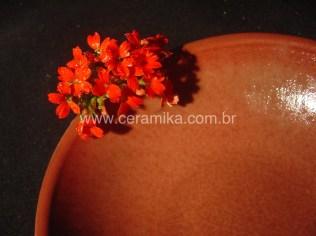 vermelhos na ceramica