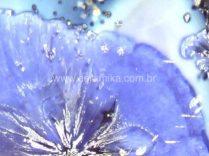 cristalizações no vidro