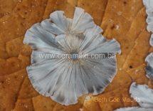 macro cristal no esmalte ceramico