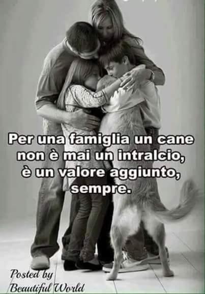 Per una famiglia un cane non è mai un intralcio