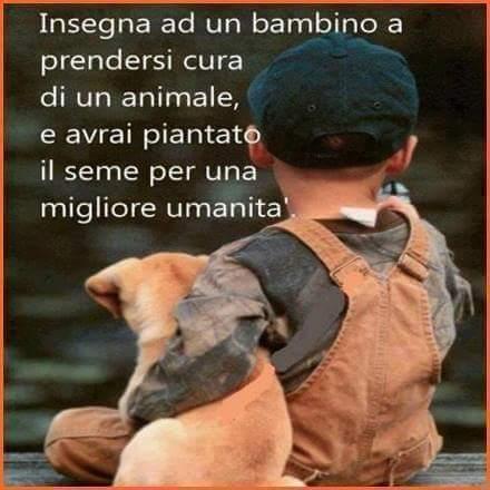 Insegna ad un bambino a prendersi cura di un animale