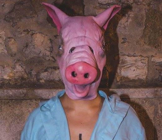 Algunas reflexiones de un cerdo