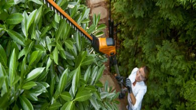 Photo of NEW WORX 20 VOLT, 20 INCH POLE HEDGE TRIMMER REACHES 12 FEET, FEATURES 10-POSITION ADJUSTABLE HEAD