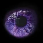 Posibilidad de edición en la pigmentación de los ojos