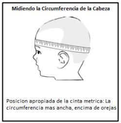 medir perimetro cefalico - cerebromedico