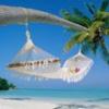 Yeryüzündeki Tropikal Cennetler