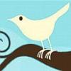 Twitter'da Yeni Tasarım Dönemi!