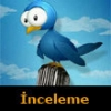 TweetCaster for Twitter Tablet İncelemesi
