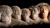 TÜBİTAK, Evrim Teorisi'ni Kaldırdı!