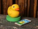 99 Dolara Akıllı Ördek!