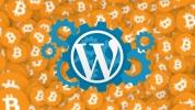 WordPress sitelerinin başı kripto para ile dertte!