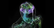 Nvidia Yapay Zeka ile Slow Motion video üretti
