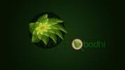 Bodhi Linux yeni sürümü duyurdu
