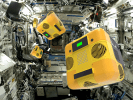 NASA'nın robot arıları göreve hazır!