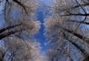 JADRAN NIJE JEDINI ADUT HRVATSKE Video o ljepotama Gorskog kotara oduzet će vam dah