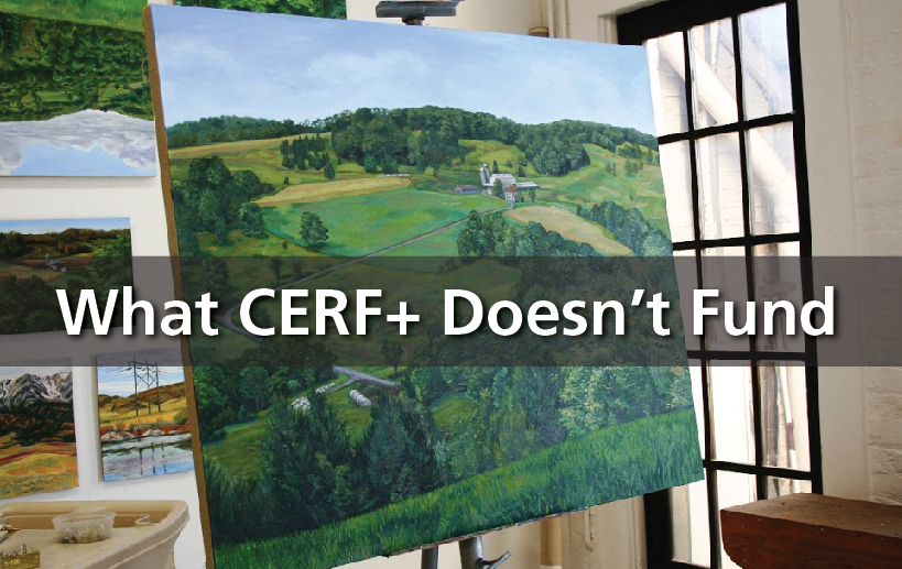 https://cerfplus.org/craft-emergency-relief-fund/what-cerf-doesnt-fund/