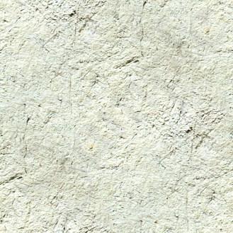 White ground wall s