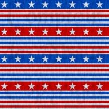 Patriotic fabric 4 Linen s