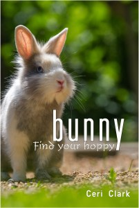 bunny password book