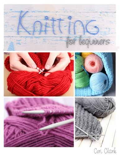 Password Book (Knitting for Beginners): A discreet internet password organizer (Disguised Password Books)