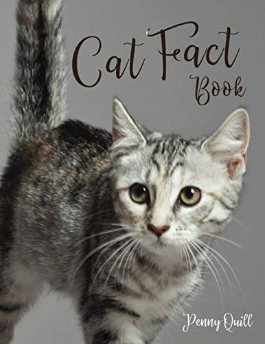 Cat Fact Book: Disguised Large Print Password Book with Phone Numbers,  Birthdays and Other Information to Keep Everything in One Place | Cat Design … (Large Print Contacts & Password Books)