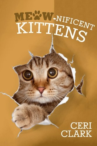 Meow-nificent Kittens: The Secret Personal Internet Address & Password Log Book for Kitten & Cat Lovers (Disguised Password Book Series) (Volume 1)