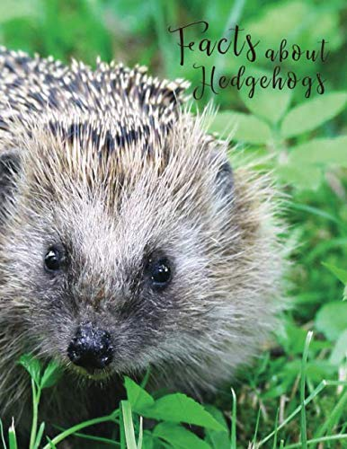 Facts About Hedgehogs: Large print password book with phone numbers,  birthdays and other information to keep everything in one place | Hedgehog … (Large Print Contacts & Password Books)