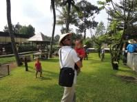 Kuntum Farmfield Bogor 10
