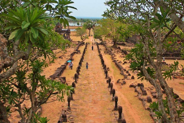 View of Causeway, between frangipani, Wat Phou