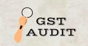 ca, audit, gst ,incometax