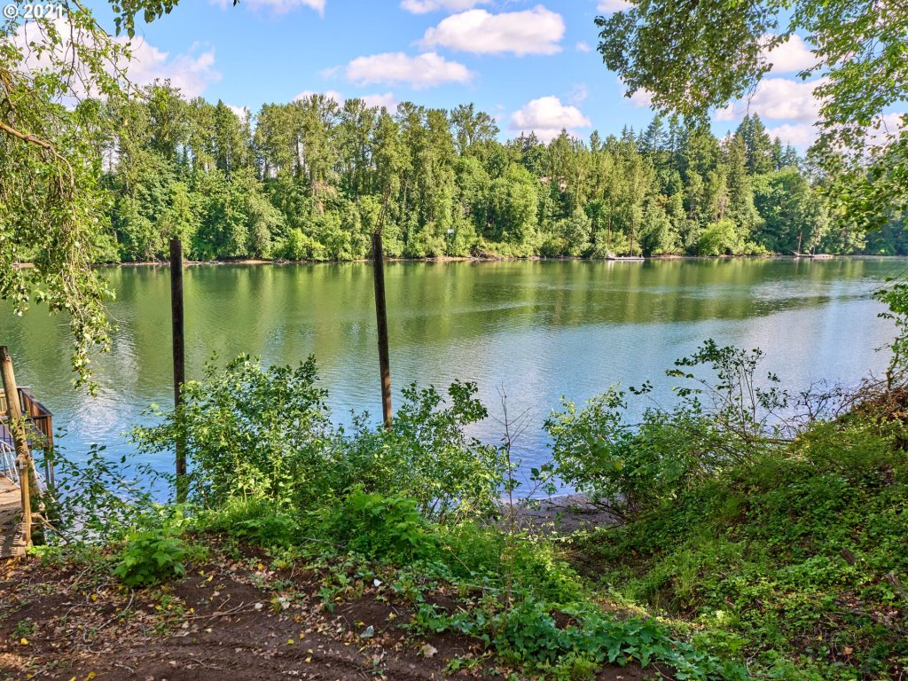 WIllamette River, River, River Frontage, Waterfront, Aquatic