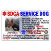 Servcie-Dog-Id-Card
