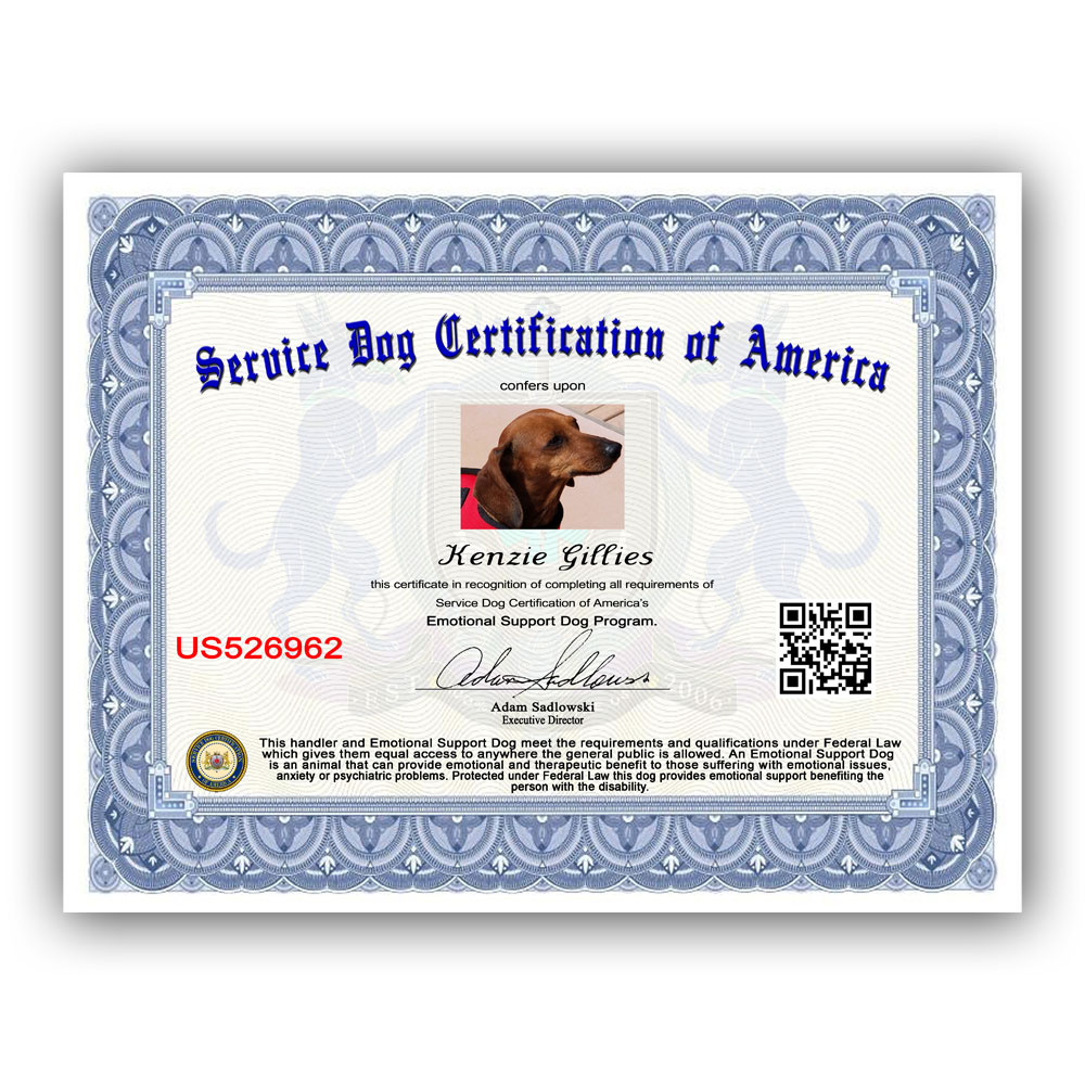 Standard Esa Pkg Service Dog Certification Of America