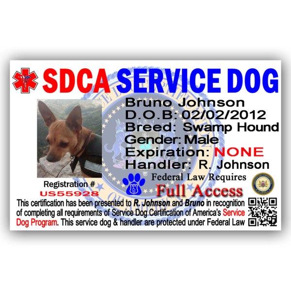 service-dog-id-bruno