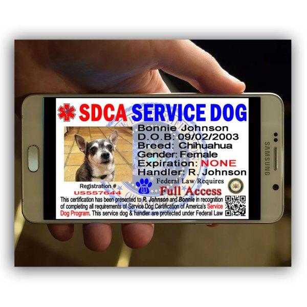 service-dog-smart-id