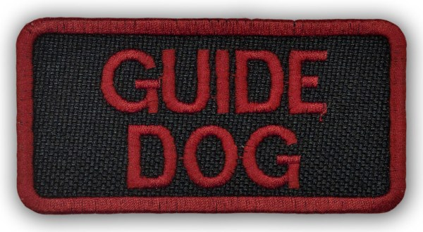 red-guide-dog