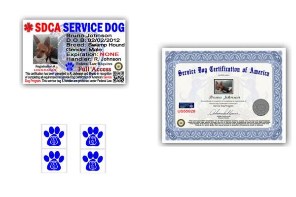 budget-service-dog