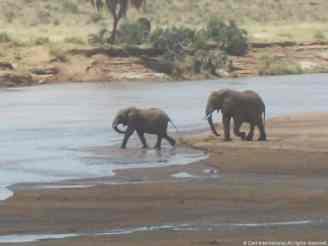 Kenya013