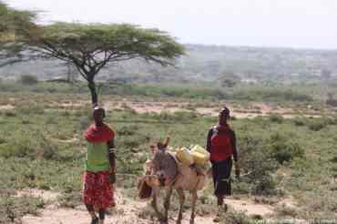 Kenya054