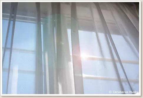 バルコニーの窓