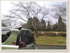 Thumbnail of post image 006