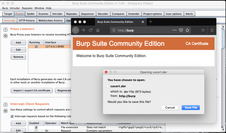 How to start using Burp Suite – A Short Guide – Cerulean Cee