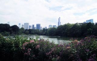 El lago de Central Park en Nueva York, Estados Unidos
