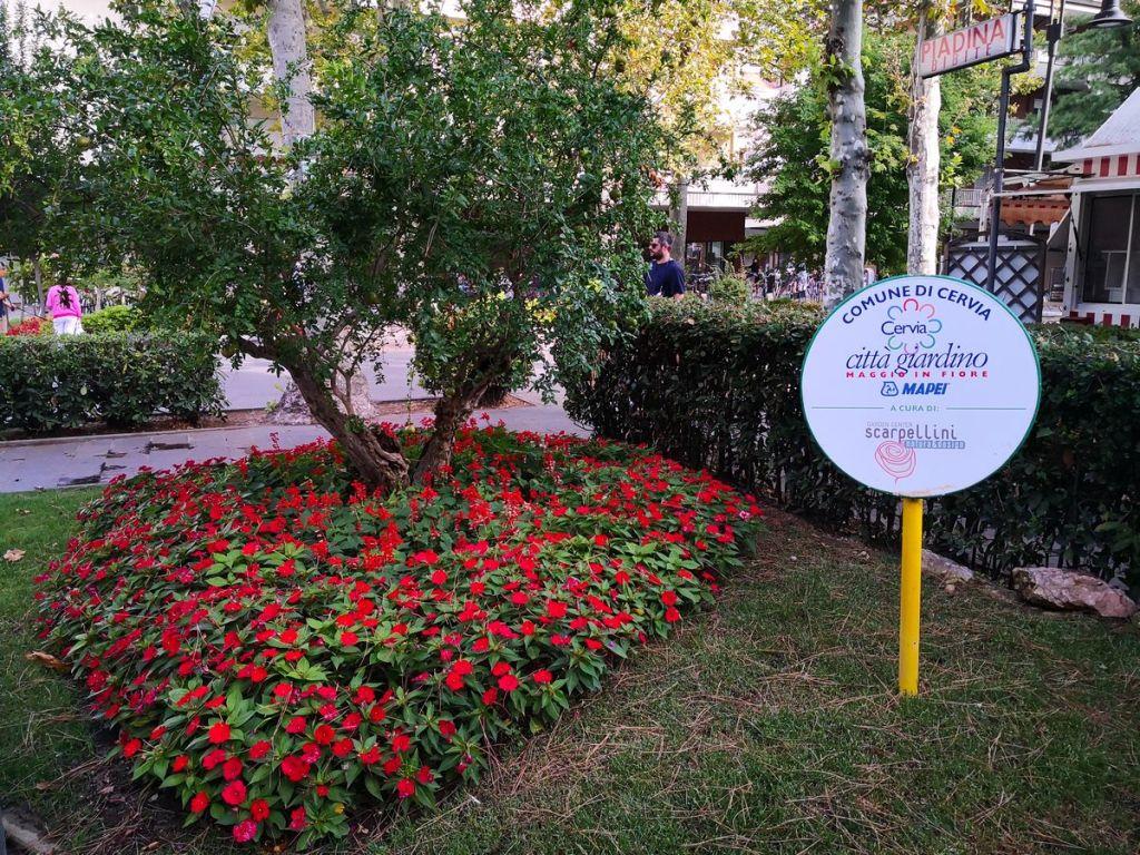 scarpellini cervia garden city