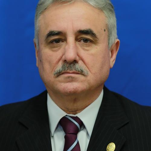 Viorel Ştefan