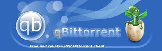 qbittorrent-image